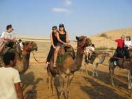 Camel Ride in Israel